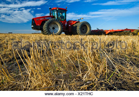 Close-up of wheat stubble with an out of focus tractor pulling cultivating equipment in the background / Manitoba, Canada. - Stock Photo