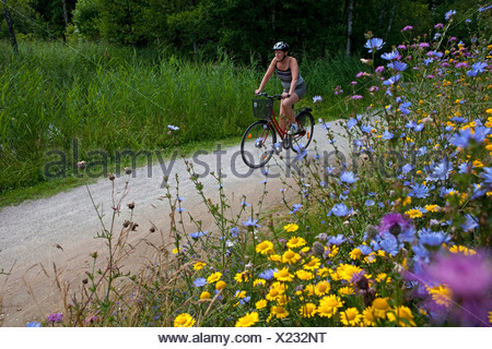 Female cyclist on the country road in summer landscape with flowers in foreground - Stock Photo