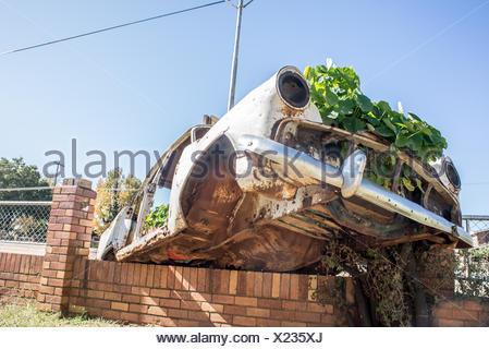 Car Wreck as Garden on Wall - Stock Photo