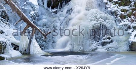 The frozen Falkauer Wasserfall waterfall, Feldberg, Black Forest, Baden-Wuerttemberg, Germany, Europe - Stock Photo