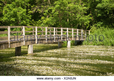 Footbridge over the River Kennet at Chilton Foliat near Hungerford Berkshire Uk - Stock Photo