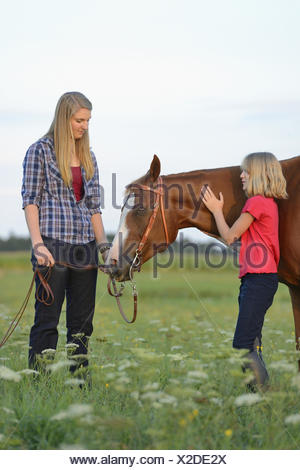 Teenage girls, sisters, horse, Paint Horse, meadow, side view, standing, - Stock Photo