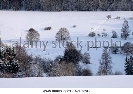 Verschneite Winterlandschaft bei Engenhahn im Taunus, Hessen, Deutschland - Stock Photo