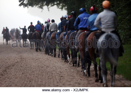 Chantilly, France, riders and horses at the ride in the morning - Stock Photo