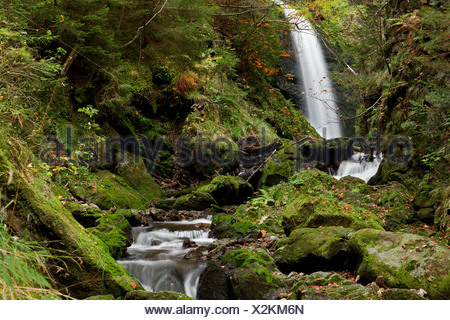 Waterfall in the Ravennaschlucht gorge in Hoellental, valley of hell, in autumn, near Freiburg, Black Forest, Baden-Wuerttemberg - Stock Photo