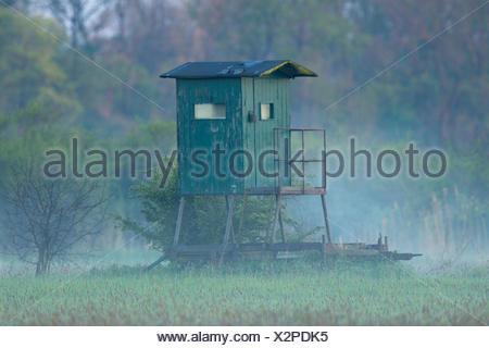 Jagdkanzel im Morgendunst, Deutschland, Nordrhein-Westfalen | raised hide in morning mist, Germany, North Rhine-Westphalia | BLW - Stock Photo