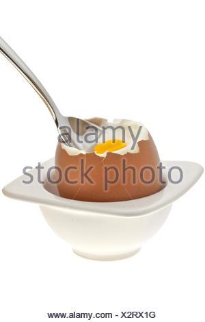 egg ........ - Stock Photo