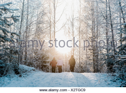 Three people nordic walking in snow covered forest - Stock Photo