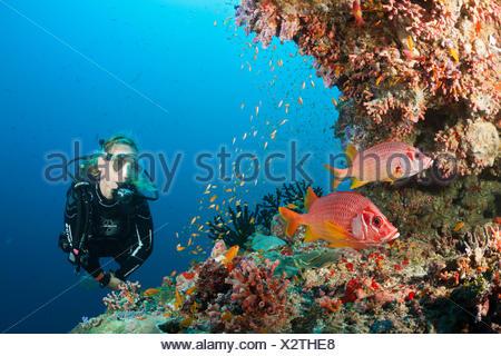 Scuba Diver on Coral Reef, Felidhu Atoll, Maldives - Stock Photo
