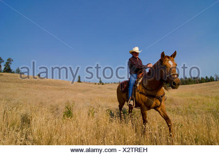 Cowboy rides his horse freely through the ranch lands near Princeton in the Similkameen region of British Columbia, Canada - Stock Photo
