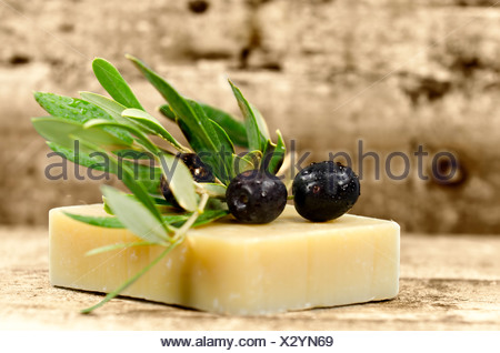 a piece of soap with an olive branch - Stock Photo