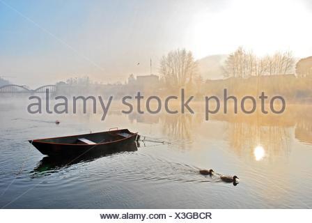 Winter, Sunrice - Stock Photo