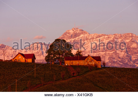 Switzerland Europe Alps mountain mountains canton AR Appenzell Ausserrhoden Alpstein Säntis Schwellbrunn AR sundown sunset farm - Stock Photo