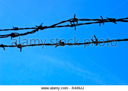 Low Angle View Of Barbed Wire Against Blue Sky - Stock Photo