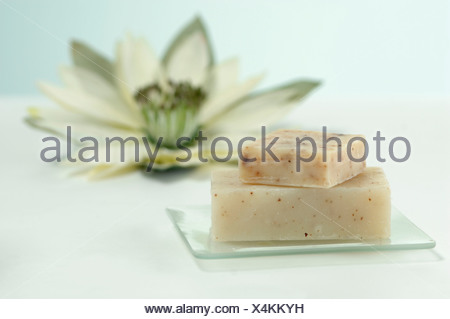Bars of soap on soap dish, water lily in background, close up - Stock Photo