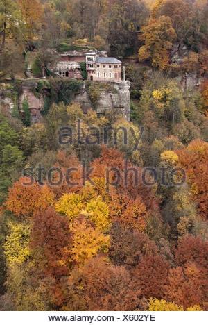 Germany, Rhineland-Palatinate, Kastel-Staadt, Klaus, autumn wood, - Stock Photo