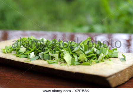 Chopped green onions on a cutting Board - Stock Photo