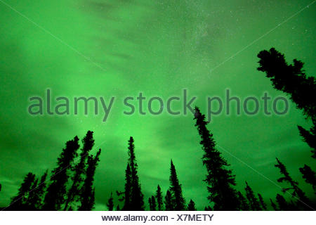 The clouds turns green as the lights happen above them. - Stock Photo