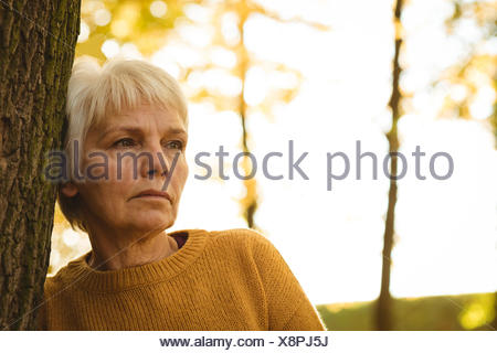 Thoughtful senior woman leaning on tree trunk in the park on a sunny day - Stock Photo