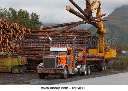 Forwarder Loading Logs Harvested At Chiniak Onto A Logging Truck, Kodiak Island, Southwest Alaska, Autumn - Stock Photo