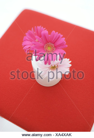 Pink gerberas in vases on stools - Stock Photo