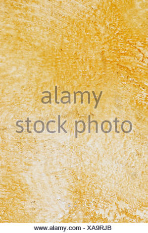 closeup rough wall cement painted backdrop background close macro close-up - Stock Photo