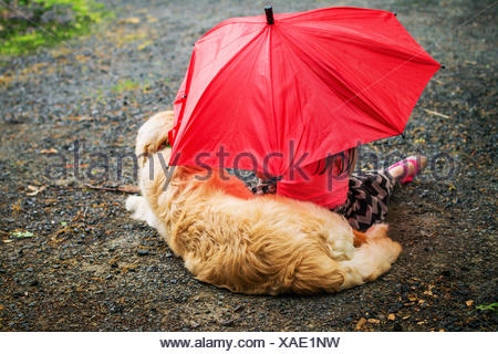 Girl and golden retriever puppy dog sitting on footpath under an umbrella in rain - Stock Photo