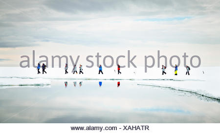 Passengers from the Akademik Shokalskiy take a walk on the ice with Adelie Penguins. - Stock Photo