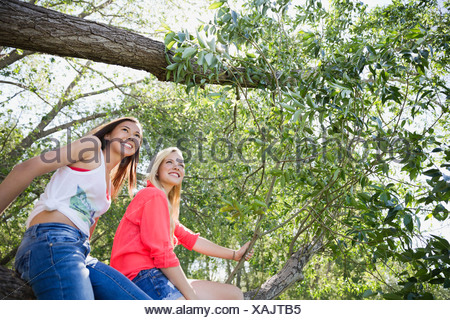 Teenage girls sitting on tree branch - Stock Photo