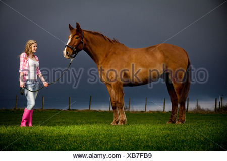 Teenage girl walking horse in field - Stock Photo