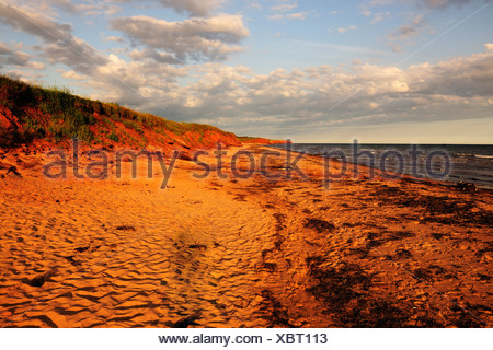 Red sandstone cliffs and beaches, typical coastline in Prince Edward Island National Park, Prince Edward Island, Canada - Stock Photo