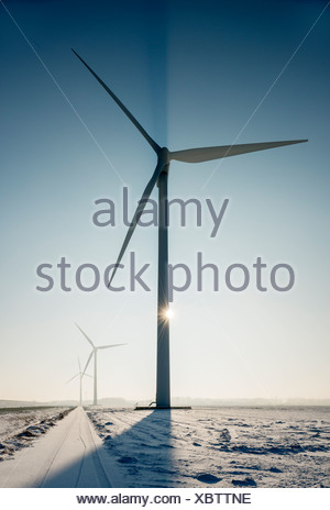 Wind turbines in snowy landscape - Stock Photo