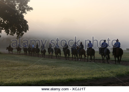 Chantilly , France, riders and horses at the ride in the morning - Stock Photo