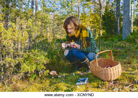 Finland, Etela-Savo, Huttula, Young woman picking mushrooms in forest - Stock Photo