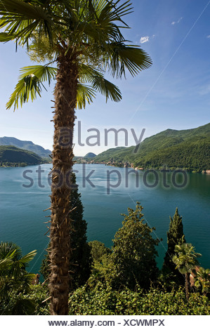 View across Lake Lugano, Lake Lago di Lugano, near Morcote, Ticino, Switzerland, Europe - Stock Photo
