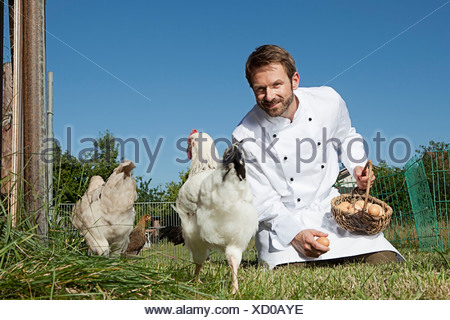 Chef feeding chickens outdoors - Stock Photo