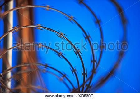 Close up of coiled razor wire - Stock Photo