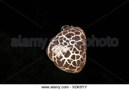 Snake Skin Agate Stone against Black Background - Stock Photo
