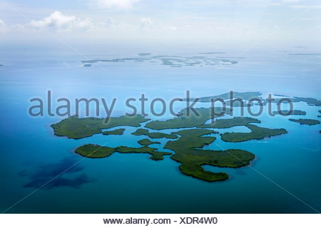 Mangroves in the ocean, aerial picture, coast between Dagria and Punta Gorda, Belize, Central America, Caribbean - Stock Photo