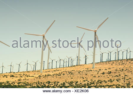 Field, wind turbines, - Stock Photo