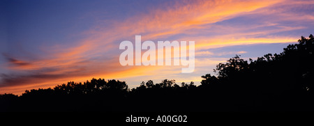 Setting sun lights high altitude stratus clouds above treeline Big Pine Lake East Ottertail County Minnesota - Stock Photo