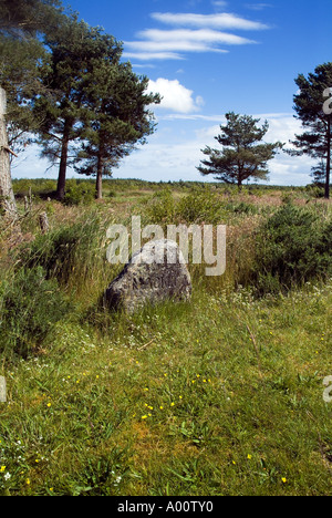 dh Battle field Mackinnon clan CULLODEN MOOR INVERNESSSHIRE Gravestone on battlefield jacobite 1745 rebellion scotland jacobites 1746 clans uprising