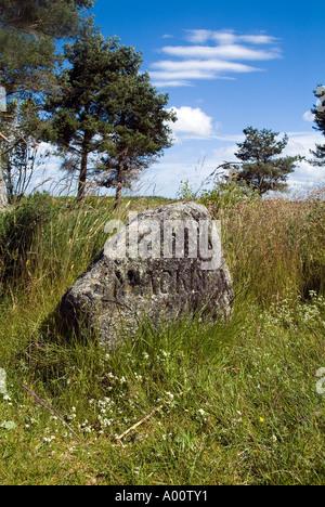 dh Culloden battlefield CULLODEN MOOR INVERNESSSHIRE Mackinnon clan gravestone on battle field site scotland jacobite rebellion 174