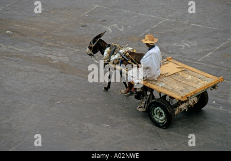 Man riding his donkey and a carriage in the early morning, Djemaa el Fna, Marrakesh, Morocco. - Stock Photo