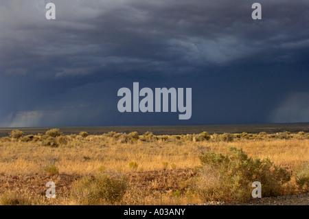 Rain storm over the arid plains near the Four Corners New Mexico. Digital photograph - Stock Photo