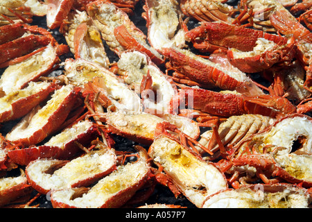 Crayfish being cooked on an open fire at beach restaurant Langebaan western cape South Africa RSA - Stock Photo