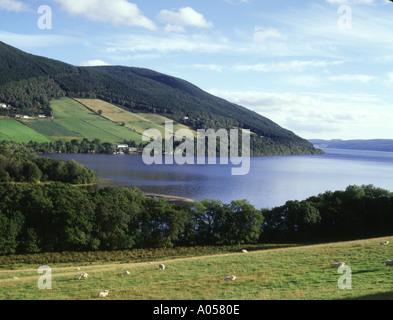 dh  LOCH NESS INVERNESSSHIRE Fields and Lochside near Drumnadrochit