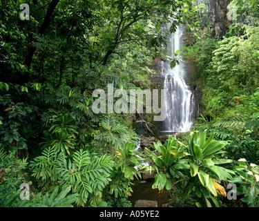 USA - HAWAII: Wailua Falls along the road to Hana on Maui - Stock Photo