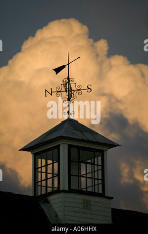 Detail of a weather vane on the Mill at Hambleden Lock - Stock Photo