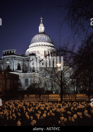 City of London and St Pauls cathedral evening view with daffodils in flower - Stock Photo